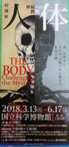 人体 NHKスペシャル 人体神秘の巨大ネットワーク