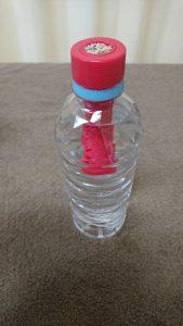 ペットボトルにミニトマトの種をまきました。