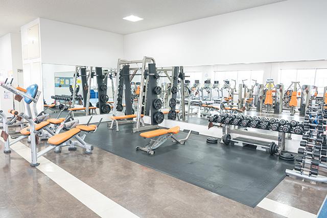 からだの筋肉を鍛え、引き締めるマシンを、胸、背中、腕、お腹、太ももなどの部位別に揃えています。